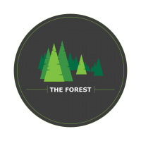 The Forest-01